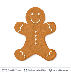 Gingerbread cookie man isolated on white vector