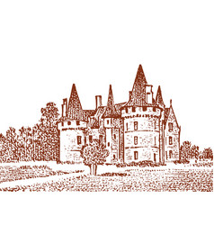 landscape with a royal castle in meadow vector image