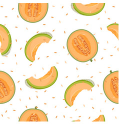Melon half and slice seamless pattern on white vector