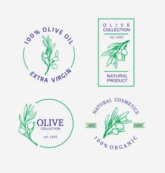 olives emblem for olive oil products vector image
