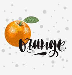 orange rough traced custom artistic handwritten vector image