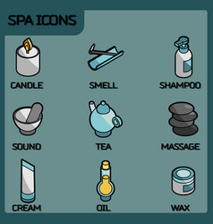 spa color outline isometric icons vector image