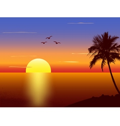 Sunset with palmtree silhouette vector image
