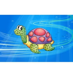 a tortoise vector image vector image