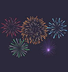 firework on night background anniversary vector image vector image