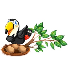 A nest at the branch of a tree with a bird vector image