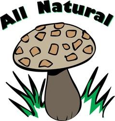 All Natural vector