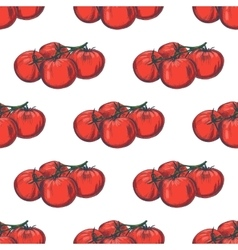 Hand drawn seamless tomato background vector image