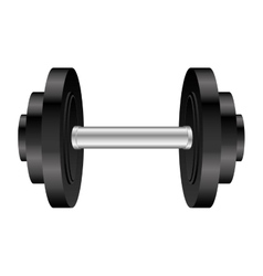 single dumbell icon image vector image