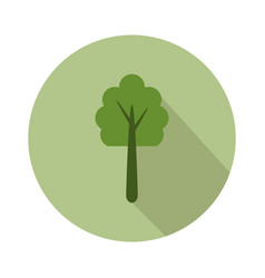 Tree icon on white background vector