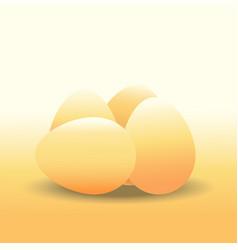 eggs chicken egg vector image vector image