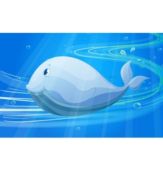 under water fish vector image vector image