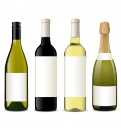 vector wine bottles vector image