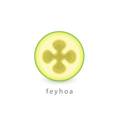 acca sellowiana feyhoa simple icon vegan logo vector image