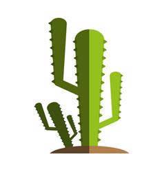 cactus flat shadow vector image
