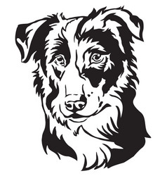 Decorative portrait of dog border collie vector