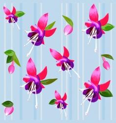 Flower fuchsia vector