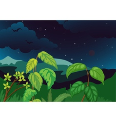 Forest at night vector