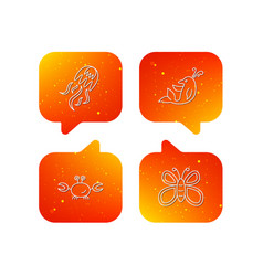 jellyfish crab and dolphin icons vector image