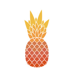 pineapple with leaf tropical exotic fruit vector image