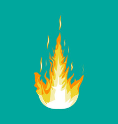 burning fire or campfire vector image