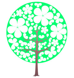 blooming tree spring transparent flowers vector image