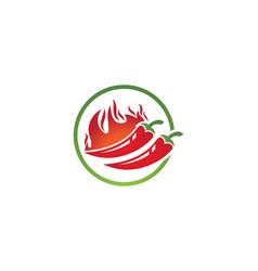 Hot chili icon vector