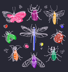 insect set line color vector image