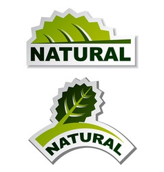 Natural leaf stickers vector