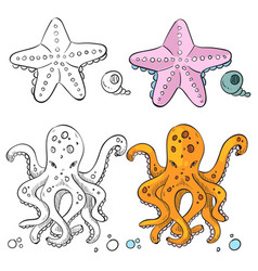Ocean life coloring page design starfish and vector