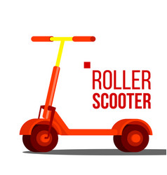 roller scooter balance bike eco transport vector image