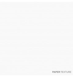 White paper texture vector