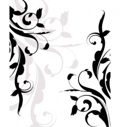 frame plant vector image