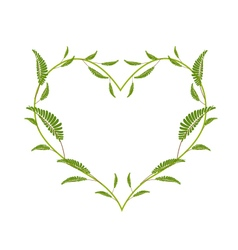 Green Leafy Leaves in A Heart Shape vector image vector image