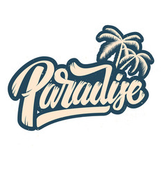 paradise lettering phrase with palm design vector image