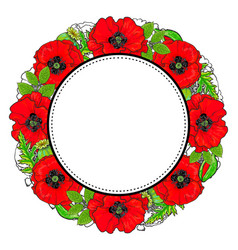 round frame of red poppy flowers and green leaves vector image vector image