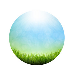 abstract natural background ball poster vector image