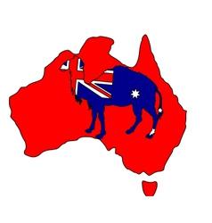 Australian camel vector