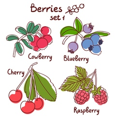 Berries set 1 vector