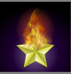 burning star with fire flame vector image