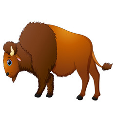 cute bison cartoon vector image