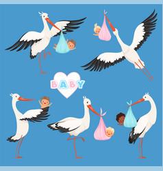 Flying stork babird delivery newborn cute vector