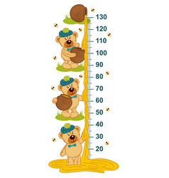 Teddy bear and honey height measure vector