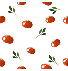 seamless pattern of colorful tomatoes on a white vector image vector image
