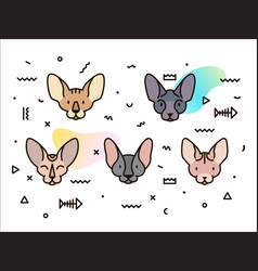 cover design with cats and geometric shapes vector image