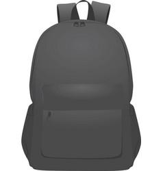 grey backpack vector image