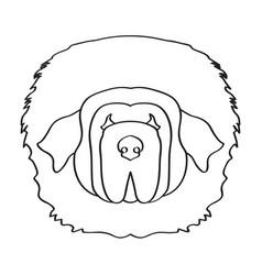Isolated tibetan mastiff vector