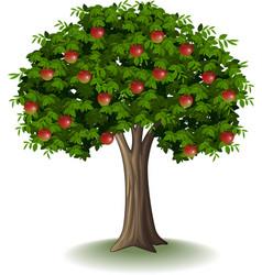 Red apple on apple tree vector