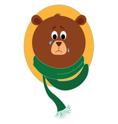 sad bear with scarf on white background vector image