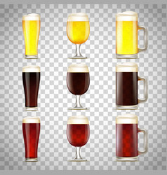 Set beer in a glass vector
